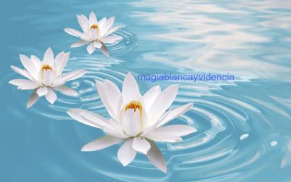 limpiezas espirituales gratis