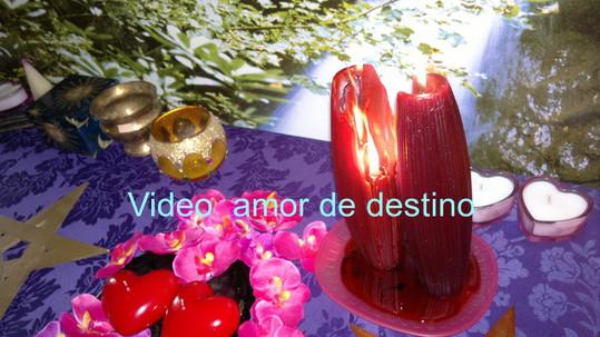 amor de destino video